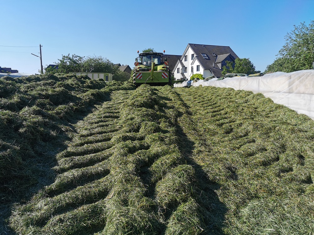 Gras Festfahren....Futter für den Winter