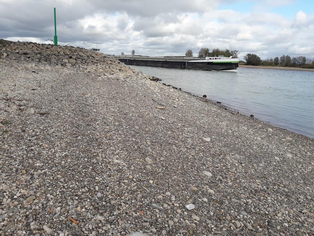 Niedrigwasser Rhein Oktober-2018