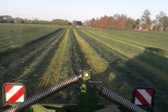 Gras-maehen
